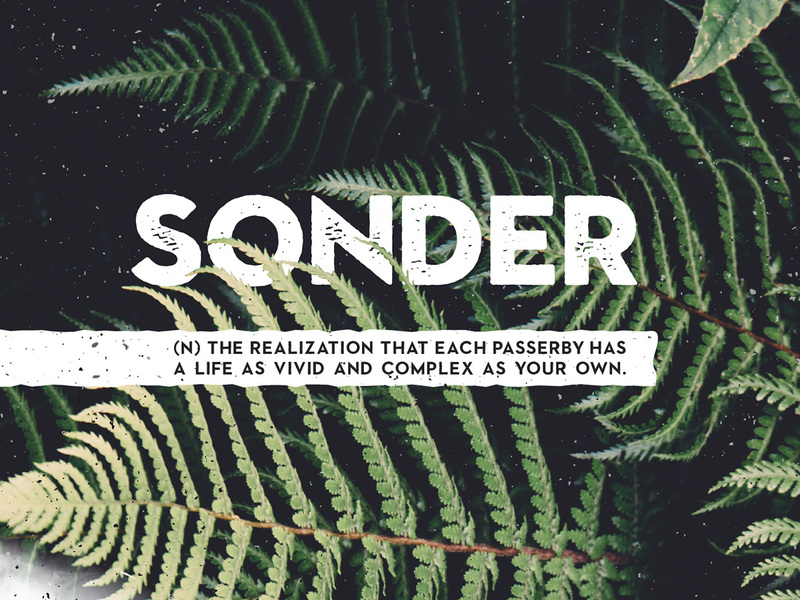 Sonder - Free Type Family preview picture