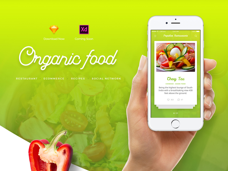 Organic Food UI Kit preview picture