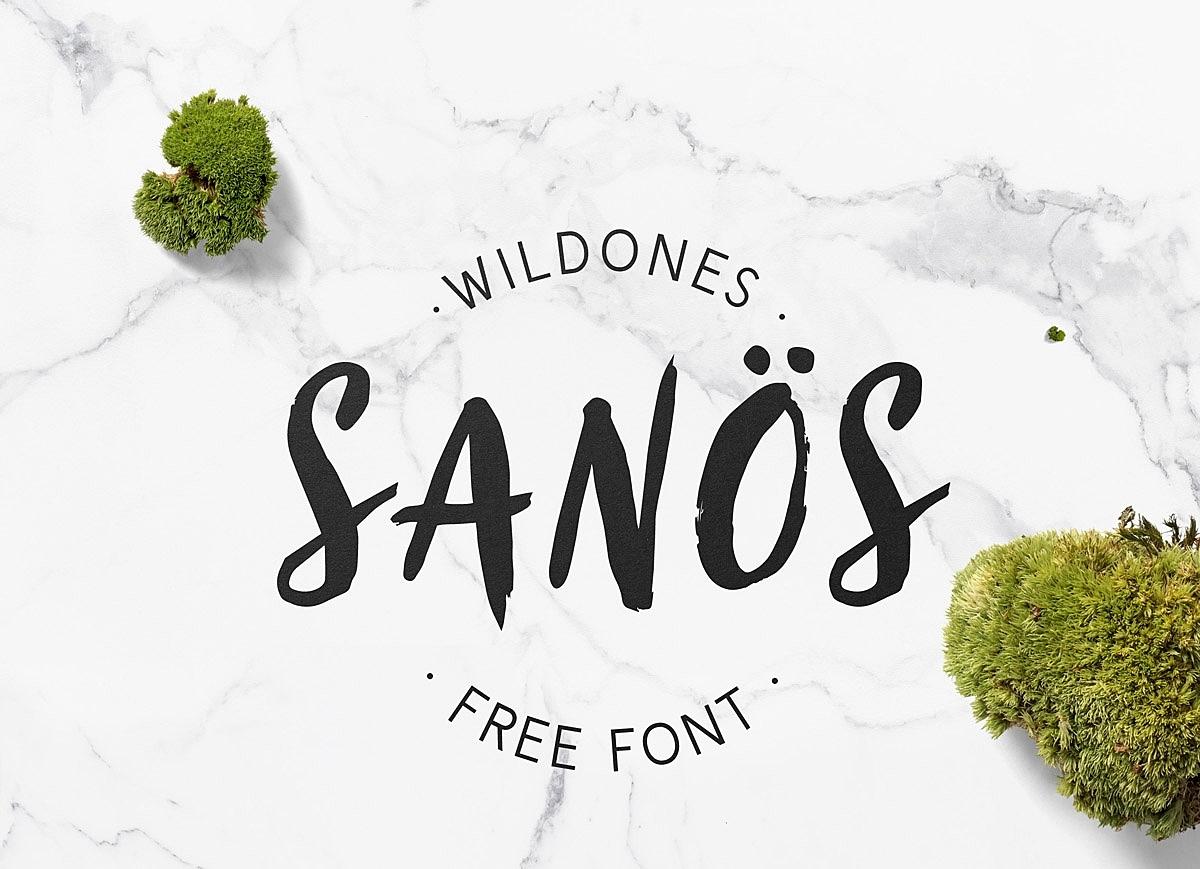 Sanös Brush Script Font