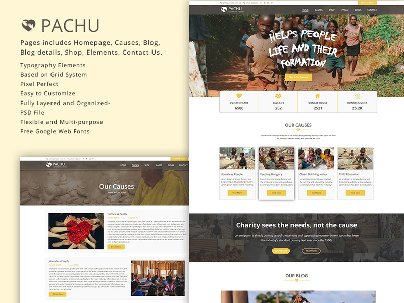 Pachu - Charity, NGO, Non Profit website PSD template