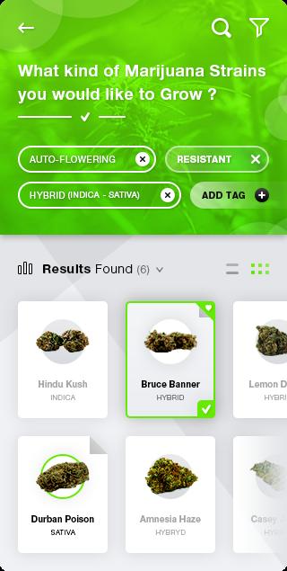 Hydroponics Medical Marijuana App