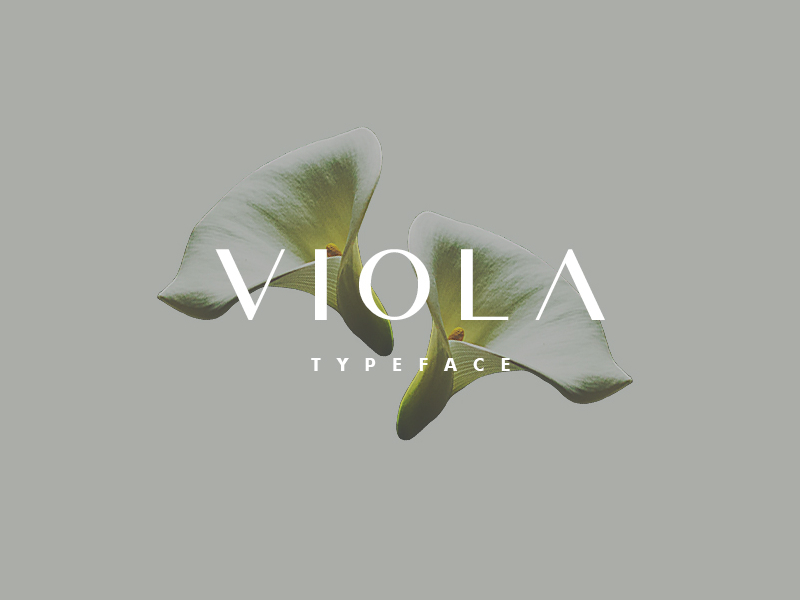 Viola - Free Typeface preview picture