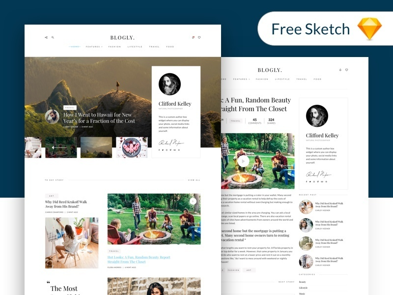 Blogly Theme - free Sketch preview picture